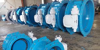 ThorPlas-Blue Bearings Installed at DEWA